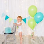 themed cake smash photography london ontario