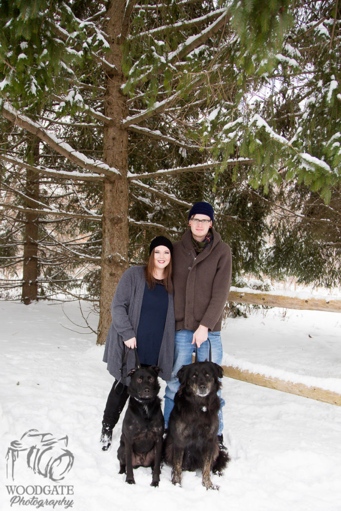 Winter Engagement Photography with Dogs London Ontario